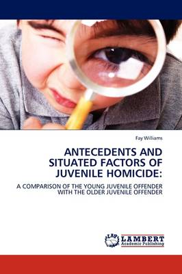 Antecedents and Situated Factors of Juvenile Homicide (Paperback)