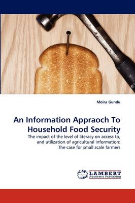 An Information Appraoch to Household Food Security (Paperback)