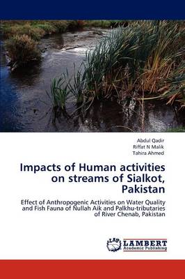 Impacts of Human Activities on Streams of Sialkot, Pakistan (Paperback)