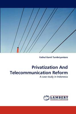 Privatization and Telecommunication Reform (Paperback)