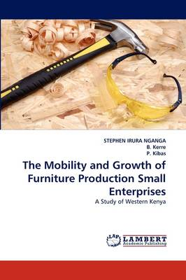 The Mobility and Growth of Furniture Production Small Enterprises (Paperback)