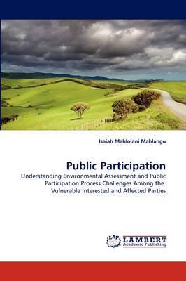 Public Participation (Paperback)