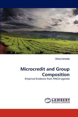 Microcredit and Group Composition (Paperback)
