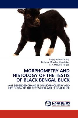 Morphometry and Histology of the Testis of Black Bengal Buck (Paperback)