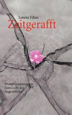 Zeitgerafft (Paperback)