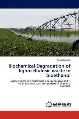 Biochemical Degradation of Lignocellulosic Waste in Bioethanol (Paperback)