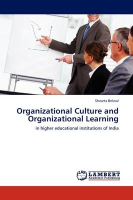 Organizational Culture and Organizational Learning (Paperback)
