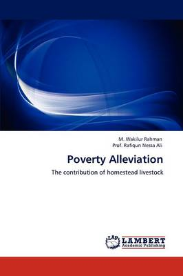 Poverty Alleviation (Paperback)