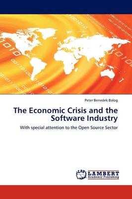 The Economic Crisis and the Software Industry (Paperback)
