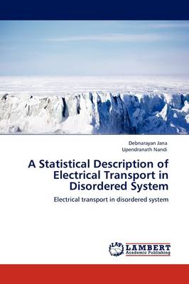 A Statistical Description of Electrical Transport in Disordered System (Paperback)
