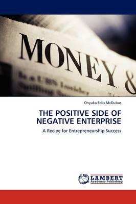 The Positive Side of Negative Enterprise (Paperback)
