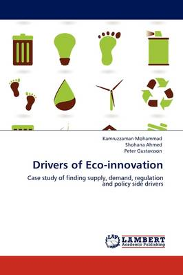 Drivers of Eco-Innovation (Paperback)
