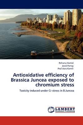 Antioxidative Efficiency of Brassica Juncea Exposed to Chromium Stress (Paperback)