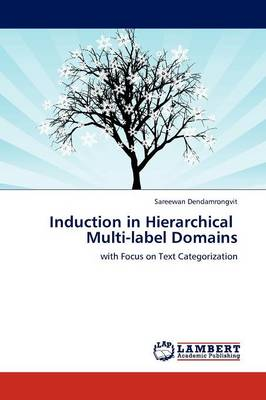 Induction in Hierarchical Multi-Label Domains (Paperback)