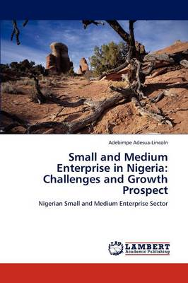 Small and Medium Enterprise in Nigeria: Challenges and Growth Prospect (Paperback)
