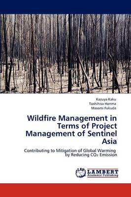 Wildfire Management in Terms of Project Management of Sentinel Asia (Paperback)