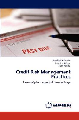 Credit Risk Management Practices (Paperback)