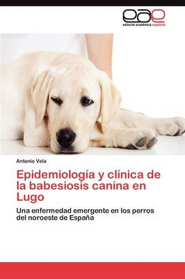 Epidemiologia y Clinica de la Babesiosis Canina En Lugo (Paperback)