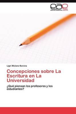 Concepciones Sobre La Escritura En La Universidad (Paperback)