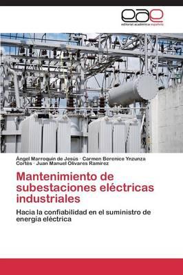 Mantenimiento de Subestaciones Electricas Industriales (Paperback)