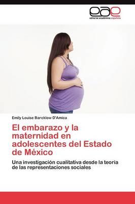 El Embarazo y La Maternidad En Adolescentes del Estado de Mexico (Paperback)