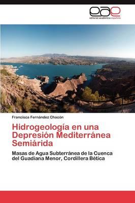 Hidrogeologia En Una Depresion Mediterranea Semiarida (Paperback)