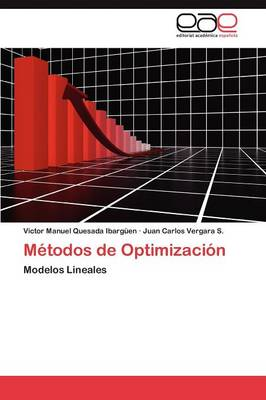 Metodos de Optimizacion (Paperback)