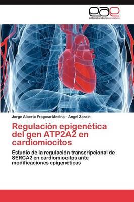 Regulacion Epigenetica del Gen Atp2a2 En Cardiomiocitos (Paperback)