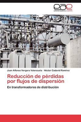 Reduccion de Perdidas Por Flujos de Dispersion (Paperback)