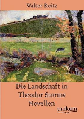 Die Landschaft in Theodor Storms Novellen (Paperback)