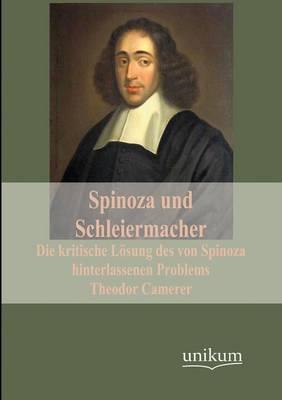Spinoza Und Schleiermacher (Paperback)