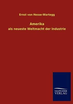 Amerika (Paperback)