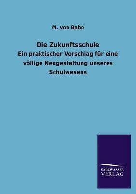 Die Zukunftsschule (Paperback)