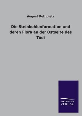 Die Steinkohlenformation Und Deren Flora an Der Ostseite Des Todi (Paperback)