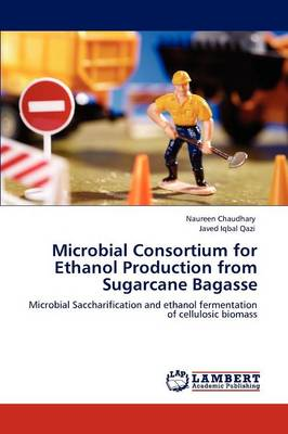 Microbial Consortium for Ethanol Production from Sugarcane Bagasse (Paperback)