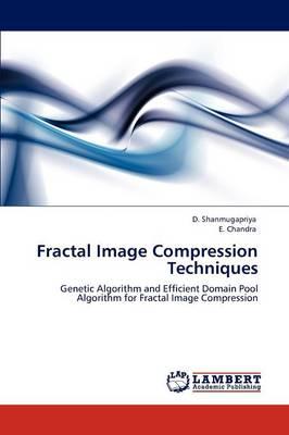 Fractal Image Compression Techniques (Paperback)