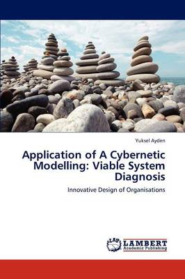 Application of a Cybernetic Modelling: Viable System Diagnosis (Paperback)