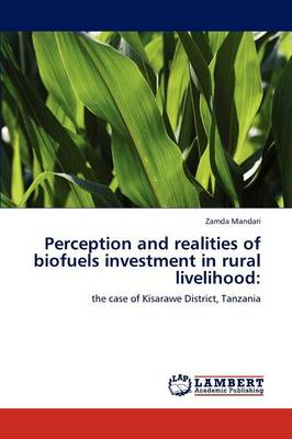 Perception and Realities of Biofuels Investment in Rural Livelihood (Paperback)
