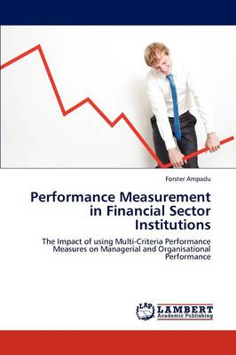 Performance Measurement in Financial Sector Institutions (Paperback)