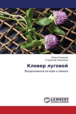Klever Lugovoy (Paperback)