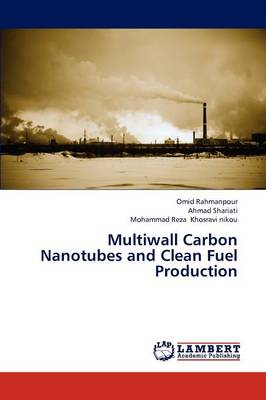 Multiwall Carbon Nanotubes and Clean Fuel Production (Paperback)