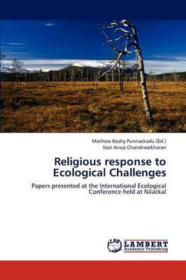 Religious Response to Ecological Challenges (Paperback)