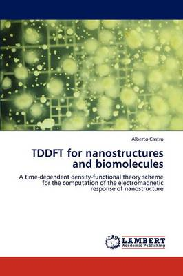 Tddft for Nanostructures and Biomolecules (Paperback)