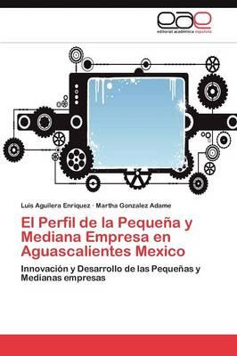 El Perfil de La Pequena y Mediana Empresa En Aguascalientes Mexico (Paperback)