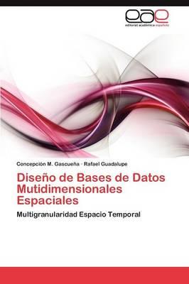 Diseno de Bases de Datos Mutidimensionales Espaciales (Paperback)