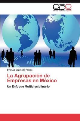 La Agrupacion de Empresas En Mexico (Paperback)