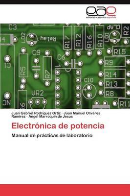 Electronica de Potencia (Paperback)