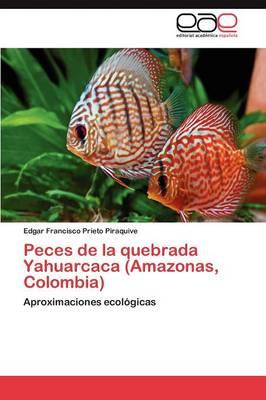 Peces de la Quebrada Yahuarcaca (Amazonas, Colombia) (Paperback)
