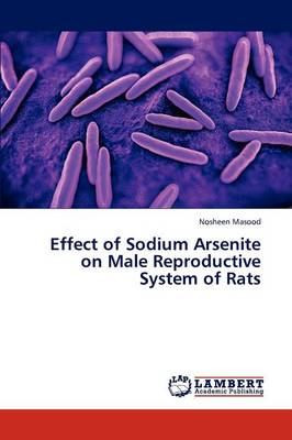 Effect of Sodium Arsenite on Male Reproductive System of Rats (Paperback)