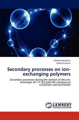 Secondary Processes on Ion-Exchanging Polymers (Paperback)